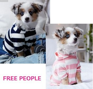 Free People★オシャレで可愛いストライプフーディがキュート★ Free People(フリーピープル) バイマ BUYMA